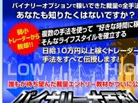 新納藤生のバイナリー大百科 公式サイト